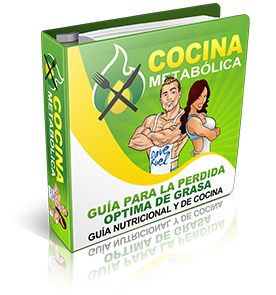Fat-Loss-Optimizer